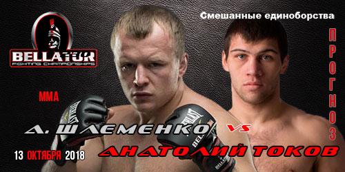 Шлеменко Токов.